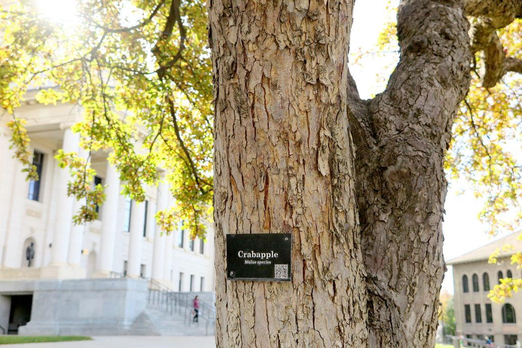 An educational sign on a tree in President's Circle at the University of Utah.
